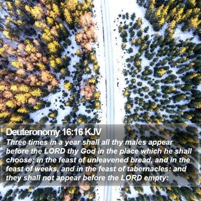 Deuteronomy 16:16 KJV Bible Verse Image