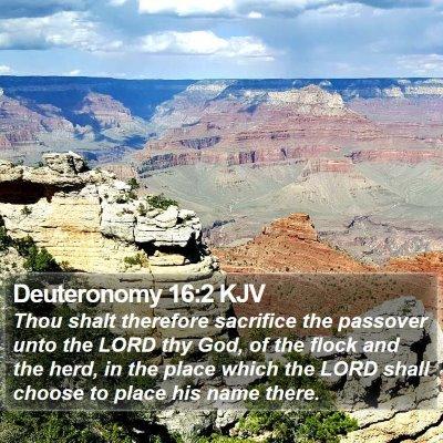 Deuteronomy 16:2 KJV Bible Verse Image
