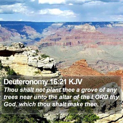 Deuteronomy 16:21 KJV Bible Verse Image
