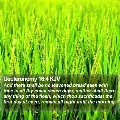 Deuteronomy 16:4 KJV Bible Verse Image