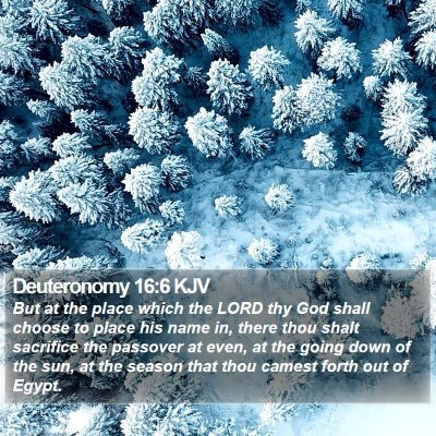 Deuteronomy 16:6 KJV Bible Verse Image