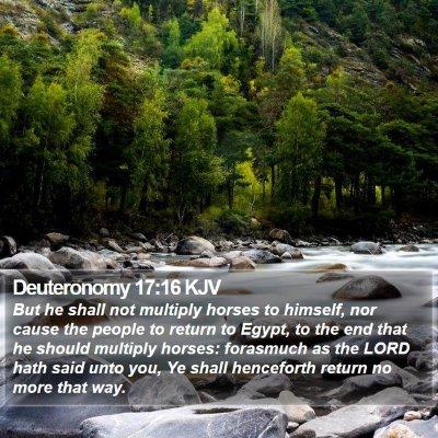 Deuteronomy 17:16 KJV Bible Verse Image