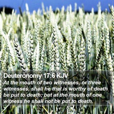 Deuteronomy 17:6 KJV Bible Verse Image