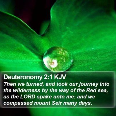 Deuteronomy 2:1 KJV Bible Verse Image