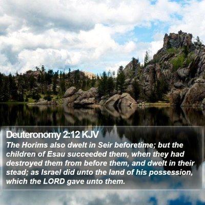 Deuteronomy 2:12 KJV Bible Verse Image