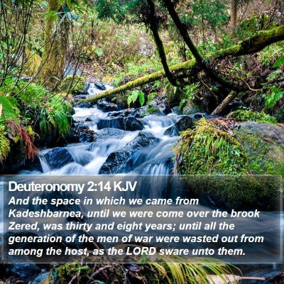 Deuteronomy 2:14 KJV Bible Verse Image