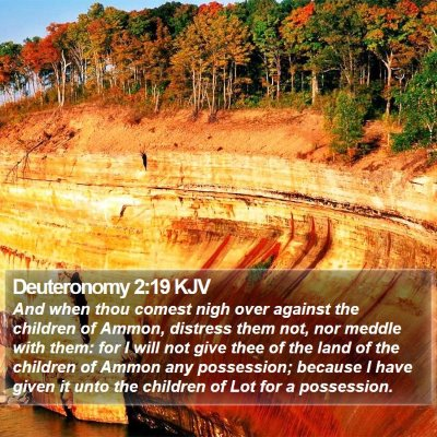 Deuteronomy 2:19 KJV Bible Verse Image