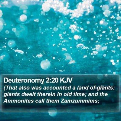 Deuteronomy 2:20 KJV Bible Verse Image