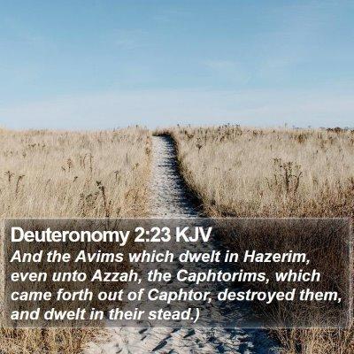 Deuteronomy 2:23 KJV Bible Verse Image