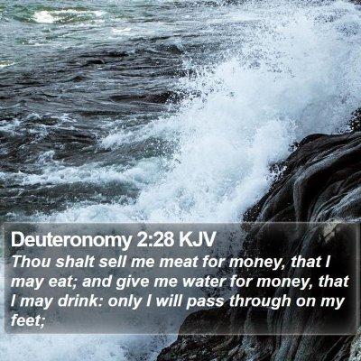 Deuteronomy 2:28 KJV Bible Verse Image