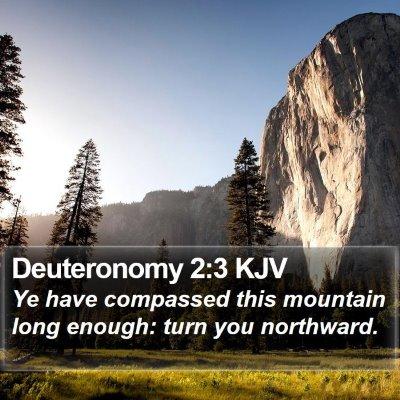 Deuteronomy 2:3 KJV Bible Verse Image