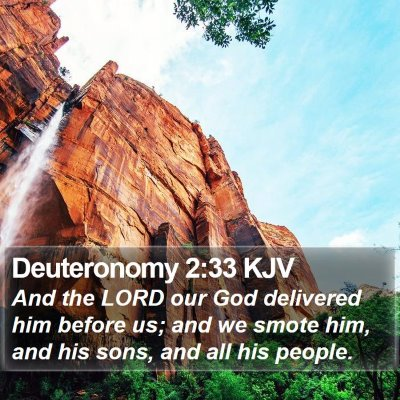 Deuteronomy 2:33 KJV Bible Verse Image