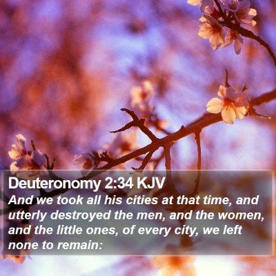 Deuteronomy 2:34 KJV Bible Verse Image
