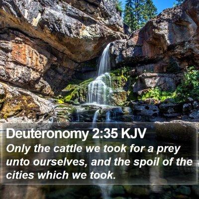 Deuteronomy 2:35 KJV Bible Verse Image