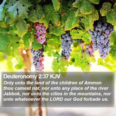 Deuteronomy 2:37 KJV Bible Verse Image