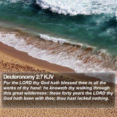 Deuteronomy 2:7 KJV Bible Verse Image