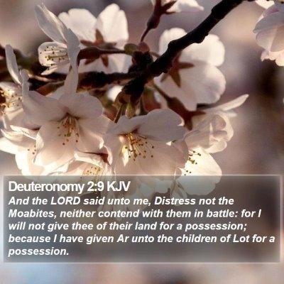 Deuteronomy 2:9 KJV Bible Verse Image