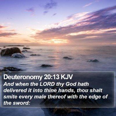 Deuteronomy 20:13 KJV Bible Verse Image