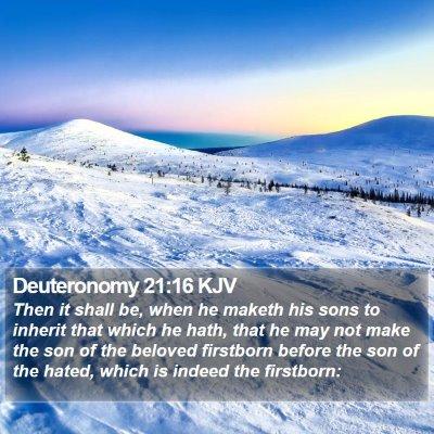 Deuteronomy 21:16 KJV Bible Verse Image
