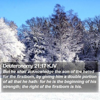 Deuteronomy 21:17 KJV Bible Verse Image