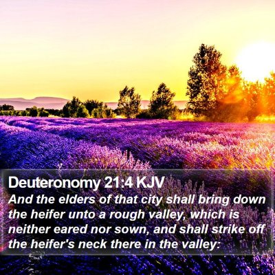 Deuteronomy 21:4 KJV Bible Verse Image