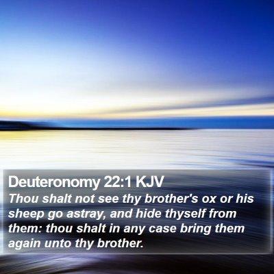 Deuteronomy 22:1 KJV Bible Verse Image