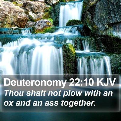 Deuteronomy 22:10 KJV Bible Verse Image