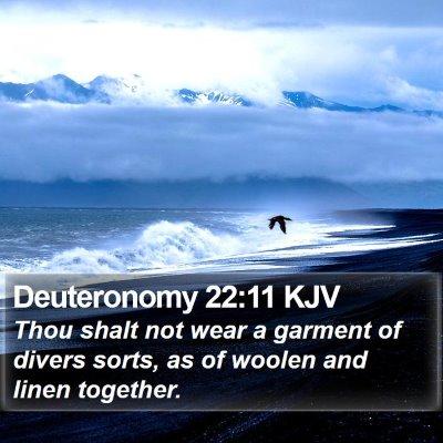 Deuteronomy 22:11 KJV Bible Verse Image