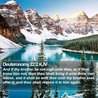 Deuteronomy 22:2 KJV Bible Verse Image