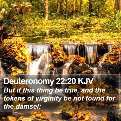 Deuteronomy 22:20 KJV Bible Verse Image