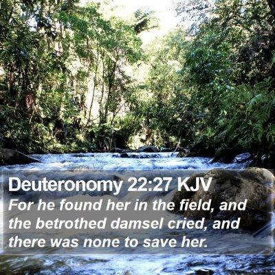 Deuteronomy 22:27 KJV Bible Verse Image
