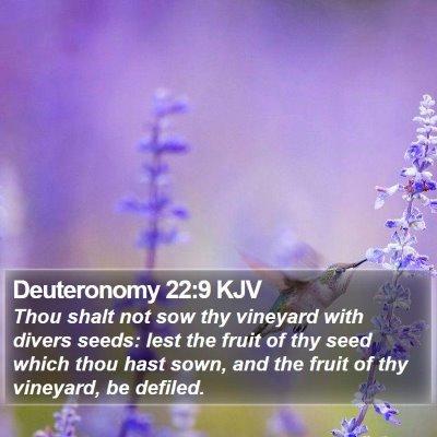 Deuteronomy 22:9 KJV Bible Verse Image