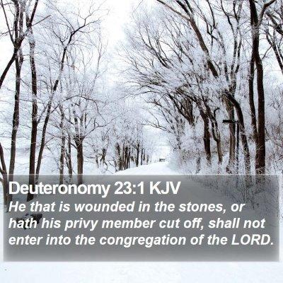 Deuteronomy 23:1 KJV Bible Verse Image