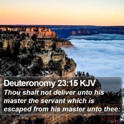 Deuteronomy 23:15 KJV Bible Verse Image
