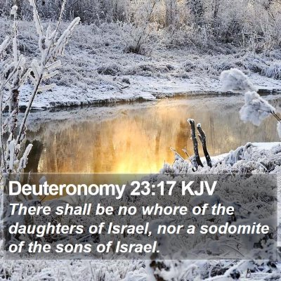 Deuteronomy 23:17 KJV Bible Verse Image