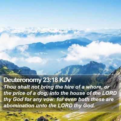 Deuteronomy 23:18 KJV Bible Verse Image
