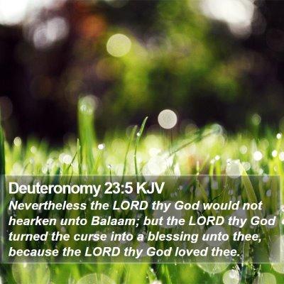 Deuteronomy 23:5 KJV Bible Verse Image