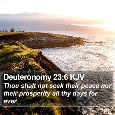 Deuteronomy 23:6 KJV Bible Verse Image