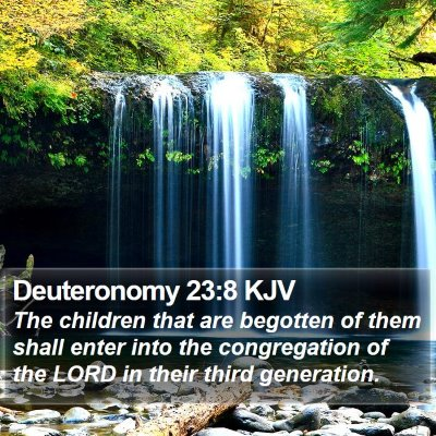 Deuteronomy 23:8 KJV Bible Verse Image