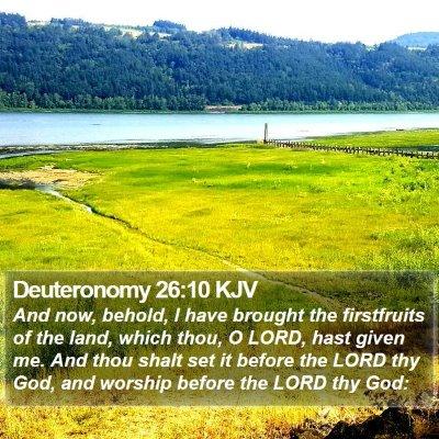 Deuteronomy 26:10 KJV Bible Verse Image