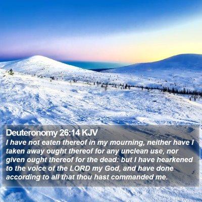 Deuteronomy 26:14 KJV Bible Verse Image