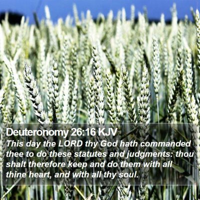 Deuteronomy 26:16 KJV Bible Verse Image