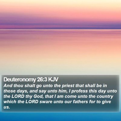 Deuteronomy 26:3 KJV Bible Verse Image