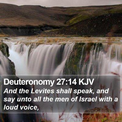 Deuteronomy 27:14 KJV Bible Verse Image