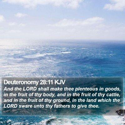 Deuteronomy 28:11 KJV Bible Verse Image