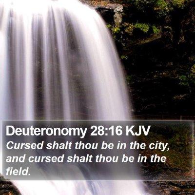 Deuteronomy 28:16 KJV Bible Verse Image