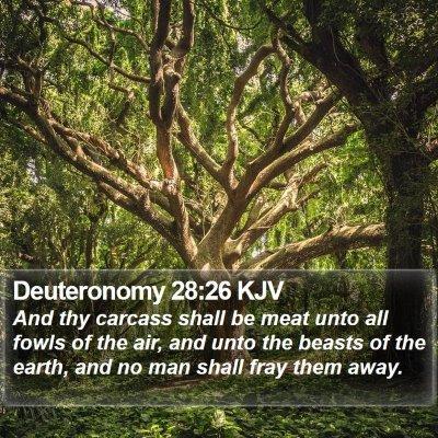Deuteronomy 28:26 KJV Bible Verse Image