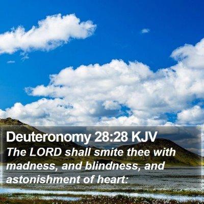 Deuteronomy 28:28 KJV Bible Verse Image