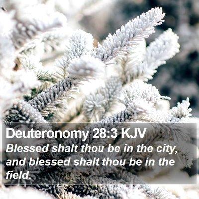 Deuteronomy 28:3 KJV Bible Verse Image