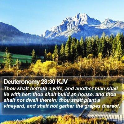 Deuteronomy 28:30 KJV Bible Verse Image